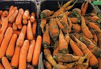 食品廃棄についての写真