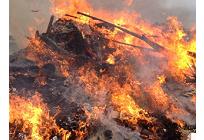地球温暖化が原因?世界で起こる森林火災の写真