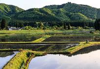 今知ってほしい 日本の農業と高齢化の関係性の写真