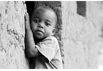 8億人を苦しめる飢餓と環境課題の写真