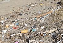近年の環境問題の写真